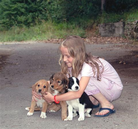 Amedea obožuje živali. Mladički njene Šarli so ji še posebej pri srcu.