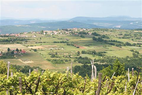 Istra, poseljena s Slovenci, se ne konča z državno mejo, poudarja Nadja Rojac