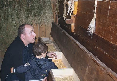 Kašča z različnimi žiti je poučna zlasti za najmlajše