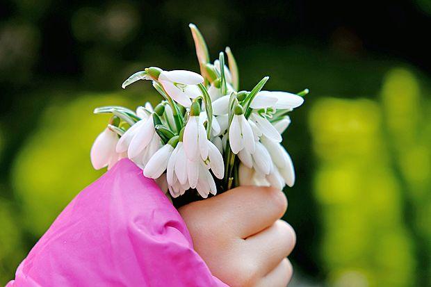 Pomlad se že prebuja in s svojo barvitostjo vabi fotograske  navdušence k akciji.
