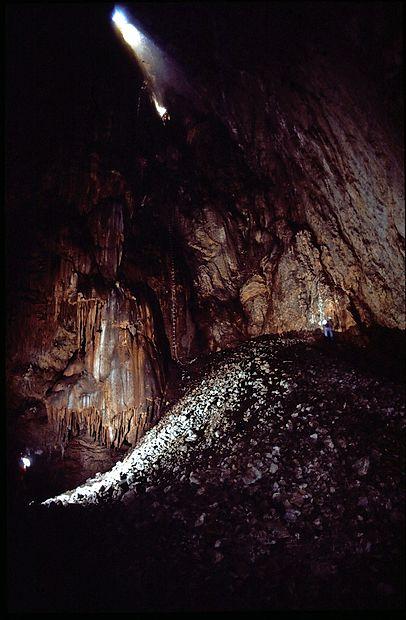 Notranjost brezna Mušje jame. Bronaste in nekaj železnih  predmetov so pred več kot sto leti našli skoraj 60 metrov pod  vhodnim oknom. Predmeti so ležali v gori nasutega kamenja.  Foto: Jože Hanc.