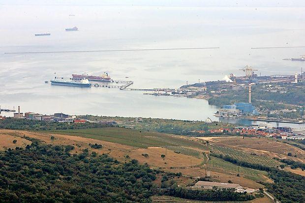 Okoljevarstvena organizacija Alpe Adria Green je na Evropsko komisijo in Evropski parlament naslovila pritožbo zaradi  kršitve evropske direktive v zvezi z nameravano gradnjo  plinskega terminala v Žavljah.