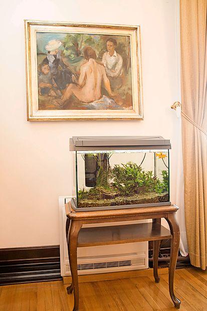 Ribici, ki ju je dobil v dar, sta vedno dobra družba.
