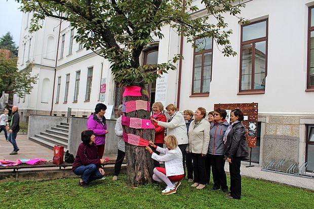 Rožnato drevo pred Čipkarsko šolo v Idriji, podobna so  v 60 slovenskih krajih.