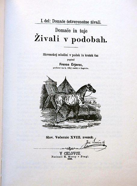 Najslavnejše Erjavčevo delo so Domače in tuje živali  v podobah iz leta 1868, edinstveno delo v naši književnosti.