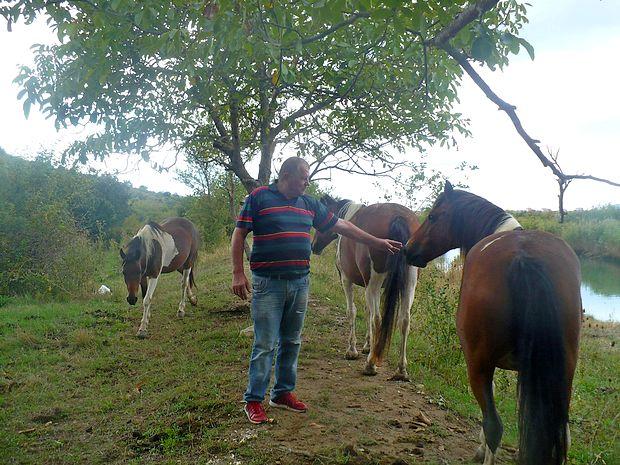 Upokojeni podjetnik Škof se ukvarja z vzrejo konjev in  oslov.