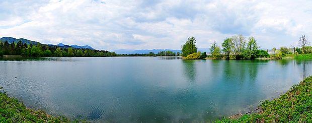Ribnik Vrbje je prijeten kraj za izlet s kolesom, sproščujoče  sprehode ali oddih v neokrnjeni naravi.