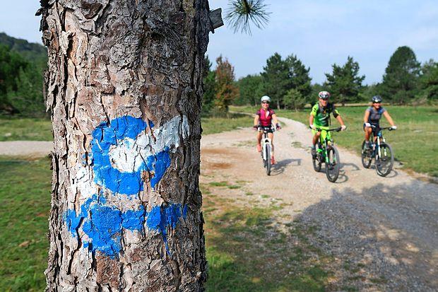 V dobrem letu od odprtja STKP je z modro-belimi  markacijami  opremljena približno petina poti.