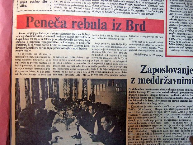 Zadružna  klet na Dobrovem je pred 46 leti  tržišču ponudila  nov izdelek - penečo rebulo.