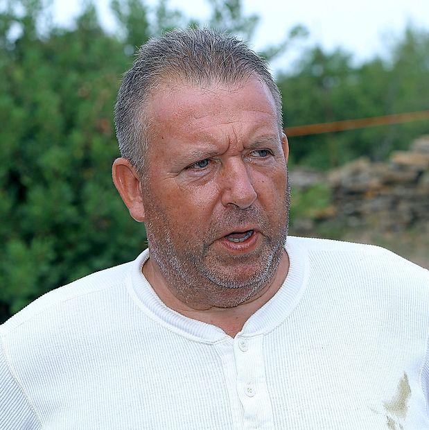 Vili Zvonarić