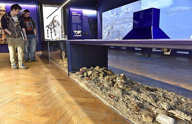 Morsko dno lahko obiskovalci tudi potipajo, prav tako nekaj  njegovih prebivalcev.