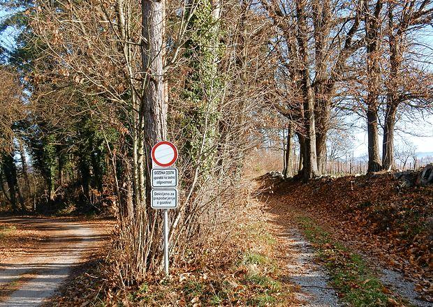 Tudi gozdove v okolici Dobravelj, Avberja in drugih kraških vasi zadnja leta vse bolj  oblegajo pobiralci kostanjev, gob in drugih gozdnih sadežev. Nekatere ustavijo  prometni znaki, večine pa ne, ker sta nadzor in kaznovanje kršiteljev pomanjkljiva.