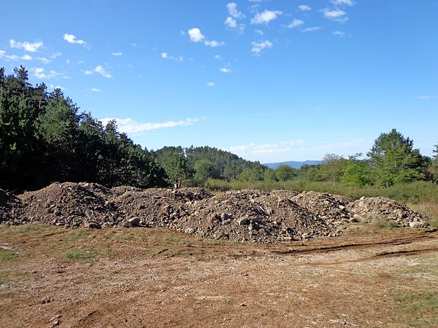 Kupi zemlje, odloženi pred dobrim mesecem dni na Črnih njivah.