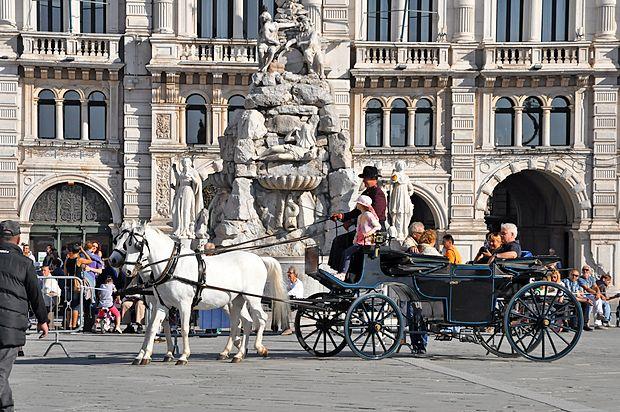 Za Tržačane in obiskovalce mesta, ki mu je prav cesarica  Marija Terezija dala nov zagon, je bil obisk dvornih konj  posebno doživetje.