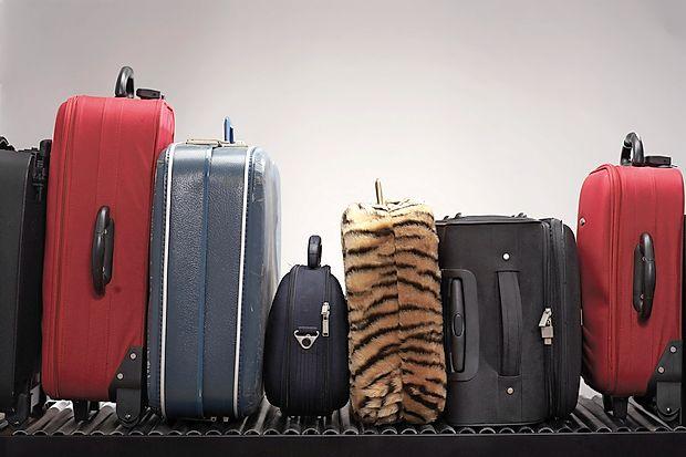 Z malarijo okužene komarje lahko domov prinesemo  tudi s prtljago.