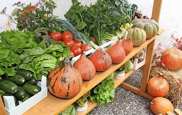 Poljščine in fermentirani mlečni izdelki naj bi bili temeljna  hrana prednikov, ki so nosilci krvne skupine B.