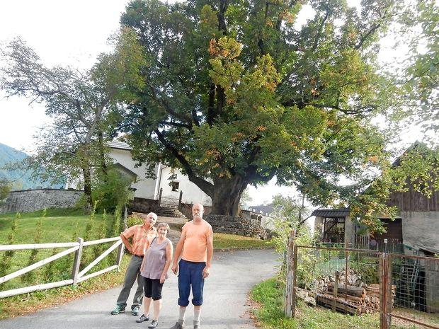 Rut in Tirolce povezujejo 800-letne skupne korenine