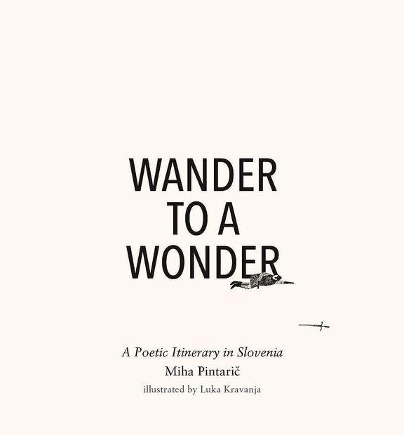 Pesniške poti k našim čudesom