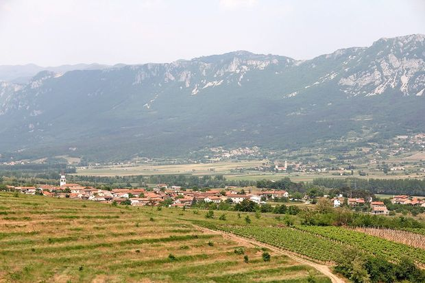 Vipavska dolina po izboru Lonely Planet med 10 top kraji v Evropi