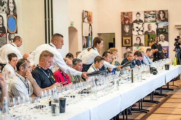 Novinarji in vinski kritiki iz vsega sveta v Brdih na pokušini rebule