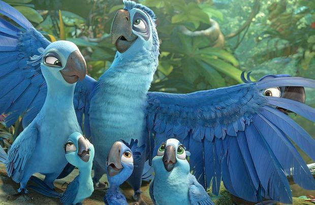 Modra papiga iz risanke Rio živi le še v ujetništvu