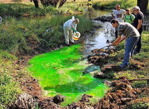 Zelena snov bo razkrila poti vode iz Doberdobskega jezera