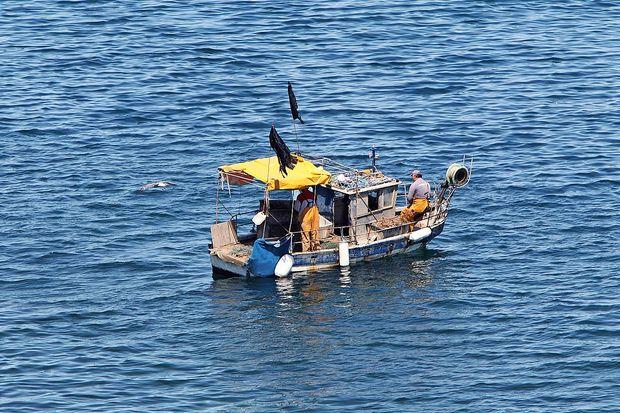 Predstavniki vlade so se najprej srečali z ribiči