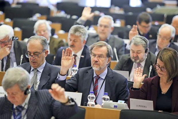 Peterle ob zaključku mandata Evropskega parlamenta zaigral na orglice