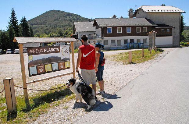 Lastniki psov bolj zdravi in aktivni