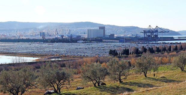 Lažen bombni alarm v Luki Koper