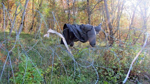 Za prevoz petih tujcev deset mesecev zapora