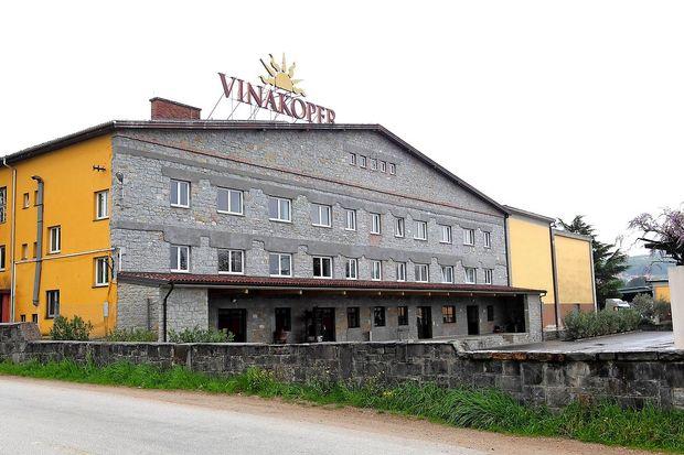 Novi direktor Vinakopra želi več tujega trga