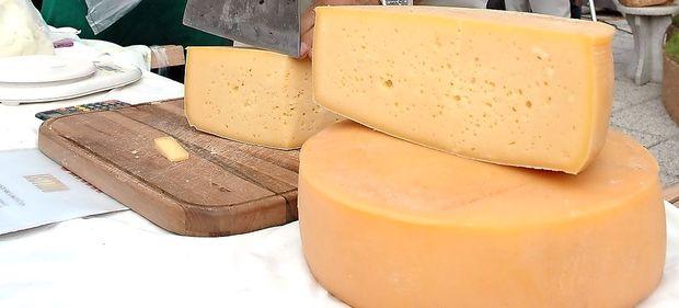Odkrili 7000 let stare ostanke sira