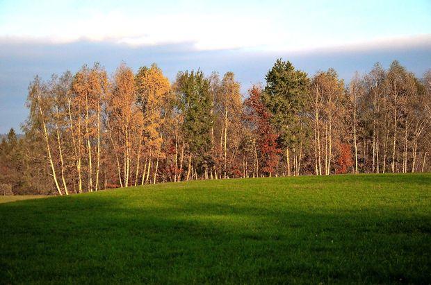 V zahodni Sloveniji delno jasno, drugod pretežno oblačno