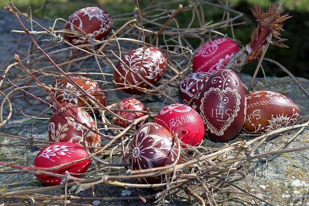 Jajce - novo življenje