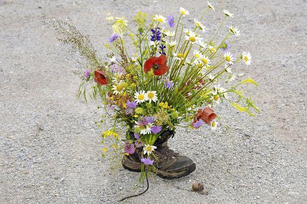 Ravnovesje na travniku