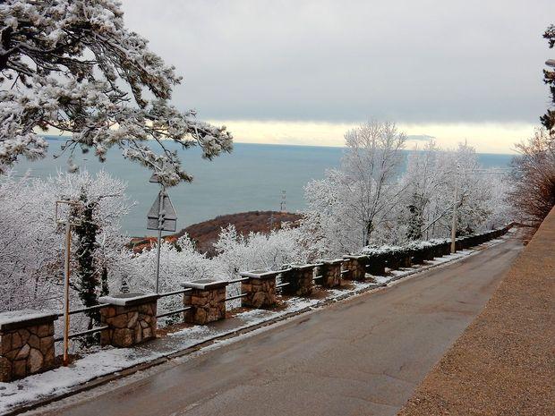 Sneg pobelil tudi Opčine