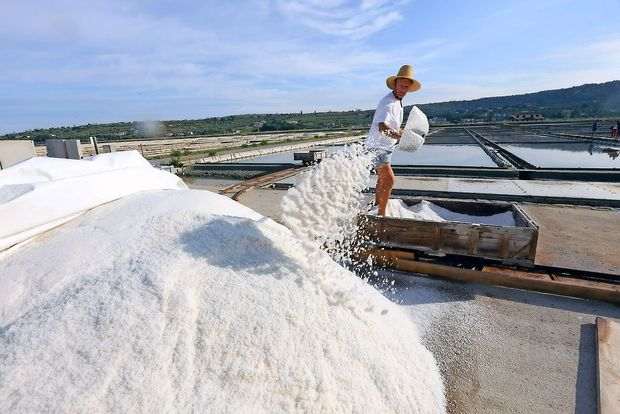 Škodljivost soli večina zanemarja