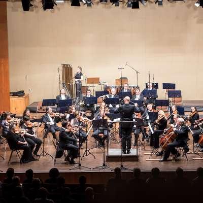 Jezik, naj bo trajno zapisan v knjigi ali le začasno govorjen v  vsakdanjem sporazumevanju, je enak orkestru z velemojstri  violine, flavte in vseh drugih orkestralnih inštrumentov. Če ga vodi  in usmerja dober dirigent (govornik, razpravljavec, pisatelj,  novinar), je njegova glasba (govorica) očarljiva. Brez izkušenega  dirigenta ni tako: orkester ne igra usklajeno, čeprav vsak velemojster inštrumenta sam za sebe igra odlično. Foto: Matej Vidmar
