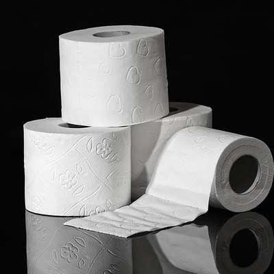 V primeru trdega brexita bi lahko v Veliki Britaniji prišlo do težav  z oskrbo s toaletnim papirjem. Foto: pixabay.com