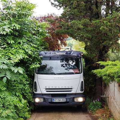 Veje ogrožajo varnost v prometu in povzročajo škodo na vozilih