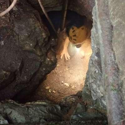 V jamo v Baredu pri Jamljah vodi ozka odprtina. Foto: primorski.it