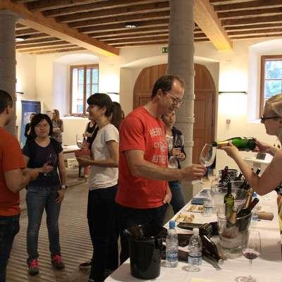 11. študentski festival vin segel čez meje