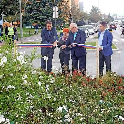Turistično društvo je ob svoji 65-letnici z vrtnicami počastilo  pet let starejše mesto.  Foto: Mitja Marussig