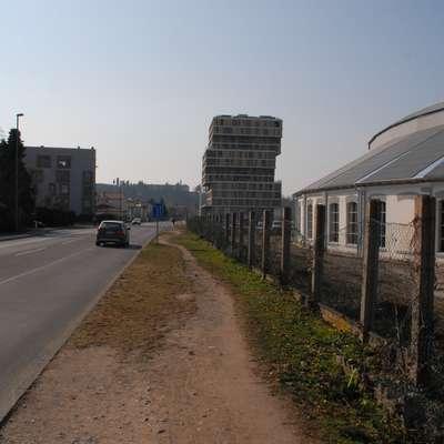 Del zemljišča, na katerem so rasle cedre, je v občinski lasti. A to  sekire ni ustavilo.  Foto: Ambrož Sardoč