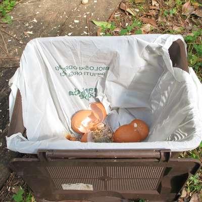 Vrečke za biološke odpadke morajo Koprčani kupovati sami. Foto: Alenka Penjak