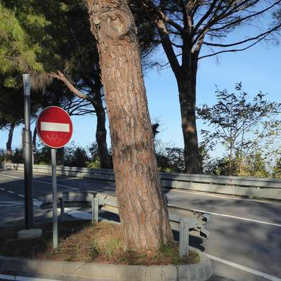 Od droga z ohišjem  za premični radar je tudi ob cesti proti  Belvederju  ostal samo drog.  Foto: Mirjana Cerin