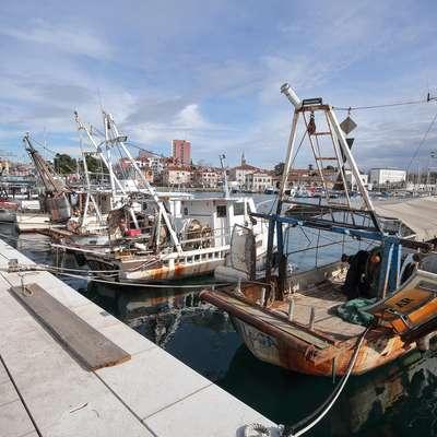 Ministrstvo za kmetijstvo z novimi razpisi ponuja ribičem dodatne  možnosti. Foto: Tomaž Primožič/FPA