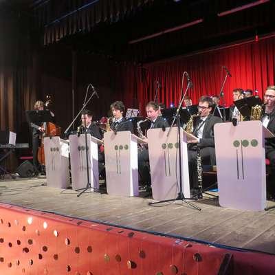 Obujeni Plesni orkester Idrija je v čast svojemu slovitemu predhodniku po štirih desetletjih igral vsaj toliko stare melodije za  ples. Foto: Saša Dragoš