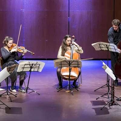 Na koncertu, ki ga   je spodbudila  Irena Kavčič iz Tolmina, je zazvenela neobičajna kombinacija glasbil.    Foto: Matej Vidmar